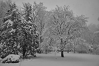 Late Winter Nor'easter. Image taken with a Leica CL camera and 18 mm f/2.8 lens (ISO 100, 18 mm, f/2.8, 1/160 sec).