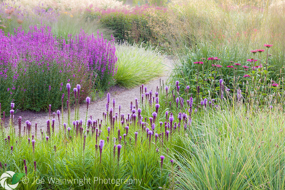 The formal and informal gardens at Trentham Gardens, Staffordshire, reach their peak of colour in July and August.