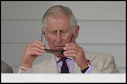Image ©Licensed to i-Images Picture Agency. 26/07/2014. Windsor, United Kingdom. Prince Charles having trouble with his sun glasses at half time during the Coronation Cup at Guards Polo Club, Windsor Great Park Picture by Andrew Parsons / i-Images