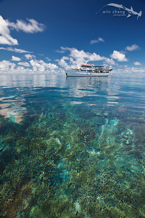 The M/V Golden Dawn, a liveaboard scuba diving vessel, over a pristine coral reef at the Eastern Fields of Papua New Guinea