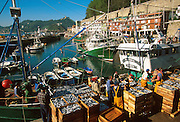 SPAIN, NORTHT, BASQUE San Sebastian, the fishing port