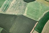 Field_Pattern