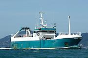 Commercial fishing vessel Tasman Viking departing Wellington harbour, New Zealand. 29/12/2007