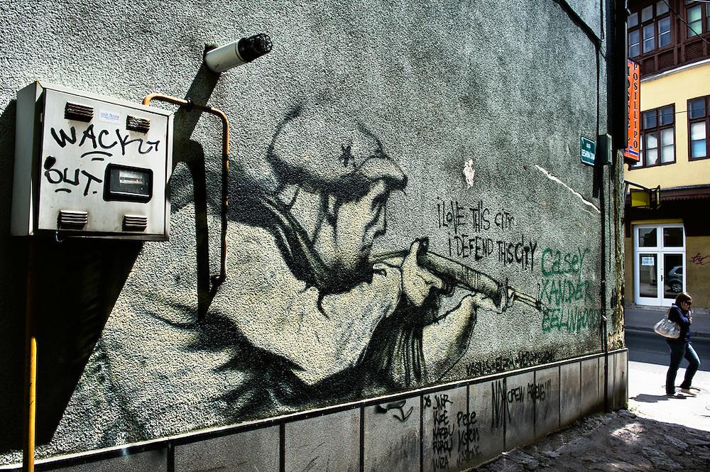 Particolare che ricorda la resistenza di Sarajevo durante l'assedio, Sarajevo, Bosnia-Erzegovina, 2012<br /> <br /> 29 maggio, 2004<br /> La scena artistica &egrave; molto modesta, paragonata a quella londinese. Il Museo nazionale accende le luci solo quando ci sono visitatori, altrimenti tutto giace nella penombra. Una signora con gli occhiali spessi siede in mezzo a una delle stanze espositive e saluta con un sorriso. Poi continua a lavorare all'uncinetto.