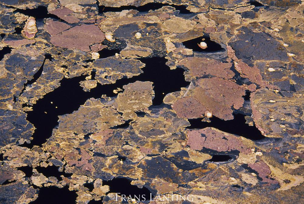 Soda crystallization patterns (aerial), Lake Magadi, Kenya