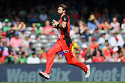 17th February 2019, Marvel Stadium, Melbourne, Australia; Australian Big Bash Cricket League Final, Melbourne Renegades versus Melbourne Stars; Kane Richardson of the Melbourne Renegades bowls
