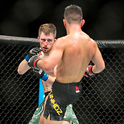 Pedro Munhoz (black trunks) defeated Brett Johns (green trunks) in a bantamweight bout at UFC 227 held at the Staples Center in Los Angeles on August 4, 2018. Photo by Todd Bigelow for ESPN.