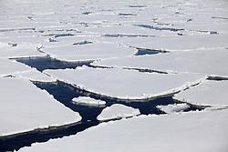 ATLANTIC OCEAN ABOARD ARCTIC SUNRISE 1JUN11 - Arctic sea ice in the Labrador Sea seen from aboard the Greenpeace Ship Arctic Sunrise...jre/Photo by Jiri Rezac / Greenpeace
