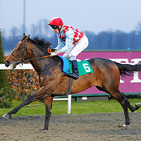 Liberty Red and Shane Kelly winning the 6.05 race