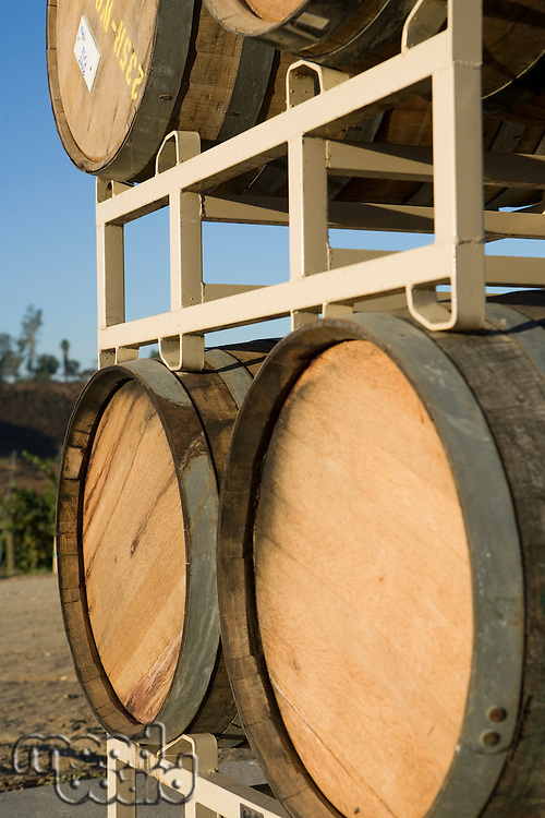 Wine barrels, outdoors