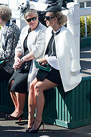 National Hunt Horse Racing - 2017 Randox Grand National Festival - Saturday, Day Three [Grand National Day]<br /> <br />  Female racegoers relax in the sunshine before the 3rd race the 3.00 the Doom Bar Maghull Novices' Chase at Aintree Racecourse.<br /> <br /> COLORSPORT/WINSTON BYNORTH