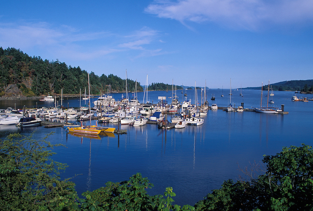 Boats at docks in Ganges Harbour on Salt Spring Island; Gulf Islands, British Columbia, Canada.