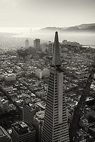 Transamerica Pyramid & Golden Gate Bridge (monochrome)