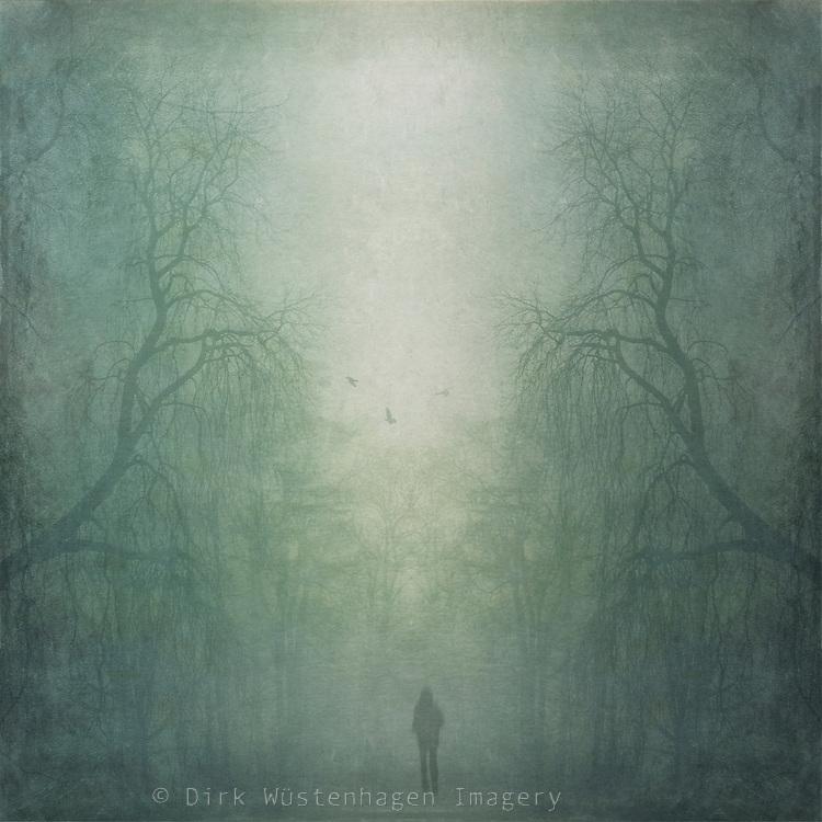 Prints: http://society6.com/DirkWuestenhagenImagery/soul-mirror-hdZ_Print<br /> <br /> Foggy forest with man walking