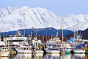 Alaska. Seward Harbor in Winter.