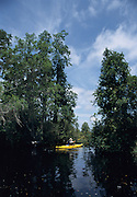 Kayaking, Okefenokee National Wildlife Refuge, Georgia