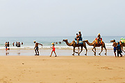 Tourists ride camels at the 'Paradise Beach,' Asilah, Morocco, 2015-08-09. <br />