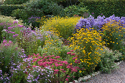 Autumn border in prairie style at Old Court Nurseries, Colwall. Planting includes sedums, rudbeckias and solidago
