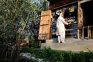 A Kashmiri woman leans against the glass counter at a small shop located on Dal Lake.