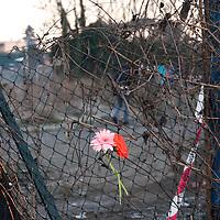 Tragedia rom morti