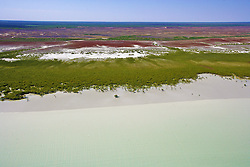 Mangroves mark the inter-tidal zone on the shores of Roebuck Bay south of Broome