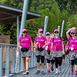 Brisbane Weekend to End Women's Cancer 2013