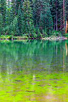 Maroon Bells-Snowmass Wilderness (Maroon Lake) at White River National Forest, Pitkin Co, CO, USA, on 29-Jul-17