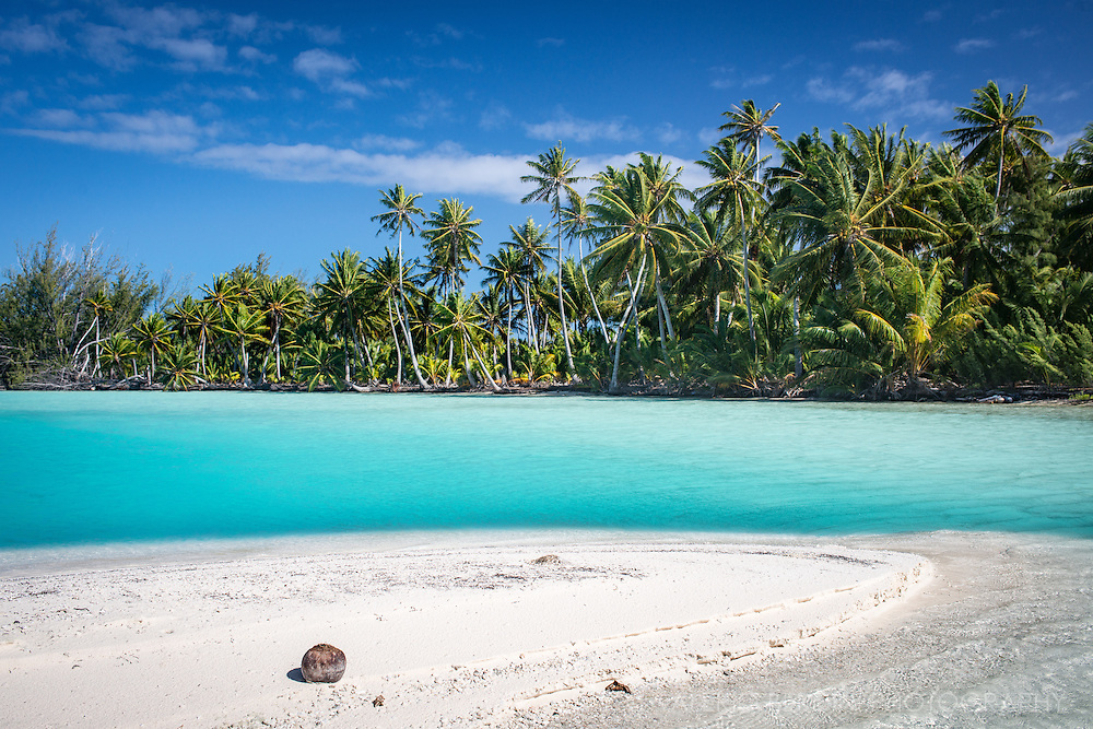 A coconut landed on a small strip of sand in the Blue Lagoon, one of the beaches of Fakarava's atoll.