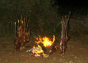 cooking meat on stakes in front of an open fire Photographed at a Hamar village in the Omo River Valley, Ethiopia