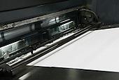 Cashin Print 2015