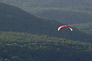 Ellenville, NY - A paragliders soars over a forest on May 30, 2009.