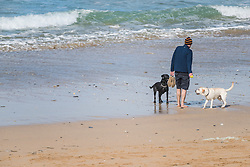 A man playing with his dogs on Fistral Beach in Newquay, Cornwall.