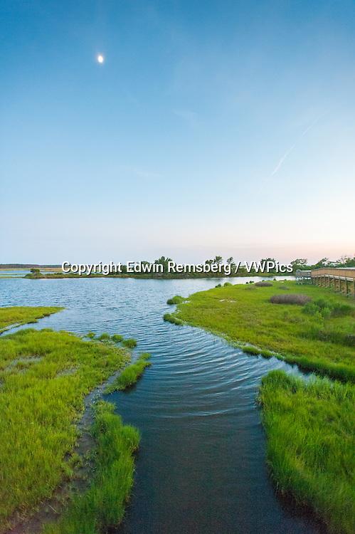Nature trail boardwalk winding through the marsh at Assateague Island National Seashore, Maryland, USA
