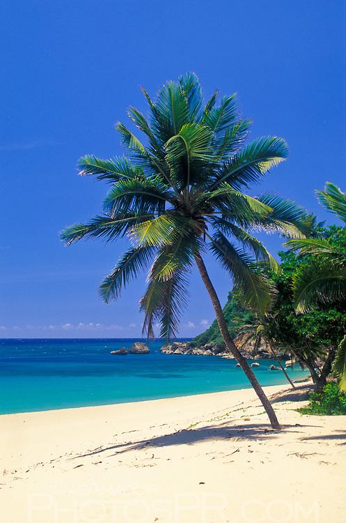 Unspoiled beach at Punta Borinquen