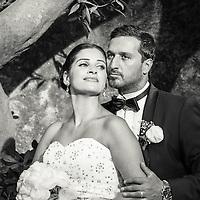 The wedding couple in Parc del Laberint, Barcelona, Spain.