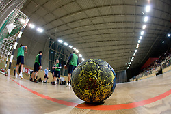 Ball at Open training session for the public of Slovenian handball National Men team before European Championships Austria 2010, on December 27, 2009, in Terme Olimia, Podcetrtek, Slovenia.  (Photo by Vid Ponikvar / Sportida)