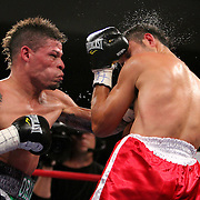 """Orlando Cruz, (green trunks)  fights against Jorge Pazos at the Kissimmee Civic Center in Kissimmee, Florida, on Friday, October 19, 2012. The Puerto Rican Cruz recently described himself as """"a proud gay man"""" and the first active boxer having pronounced so, in boxing history. (AP Photo/Alex Menendez)"""