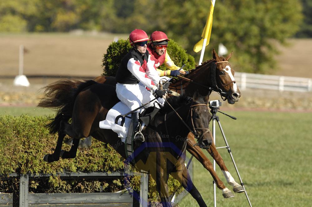 20 October 2007:  Jockey Rylee Zimmerman aboard Dromineer compete in the $20,000 GTSI Chase during the 70th running of the International Gold Cup Races on October 20, 2007 at the Great Meadow in The Plains, Va.  The race was won by Orpington (8) ridden by Robert Walsh with Dr. Kingsolving (2) ridden by Jeff Murphy and Endless Mountain (7) with Colvin Ryan aboard finishing 2nd and 3rd.