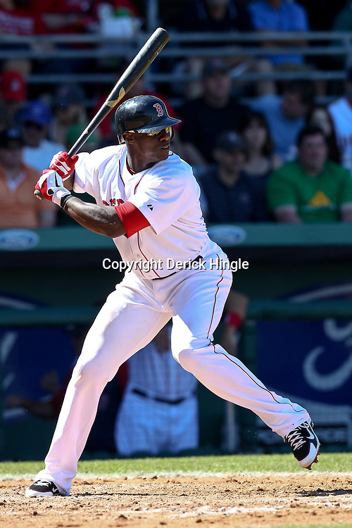 March 12, 2011; Fort Myers, FL, USA; Boston Red Sox center fielder Mike Cameron (23) during a spring training exhibition game against the Florida Marlins at City of Palms Park. The Red Sox defeated the Marlins 9-2.  Mandatory Credit: Derick E. Hingle