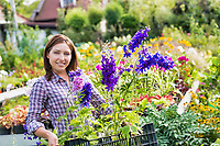 Portrait of female gardener carrying flowers on crate in shop