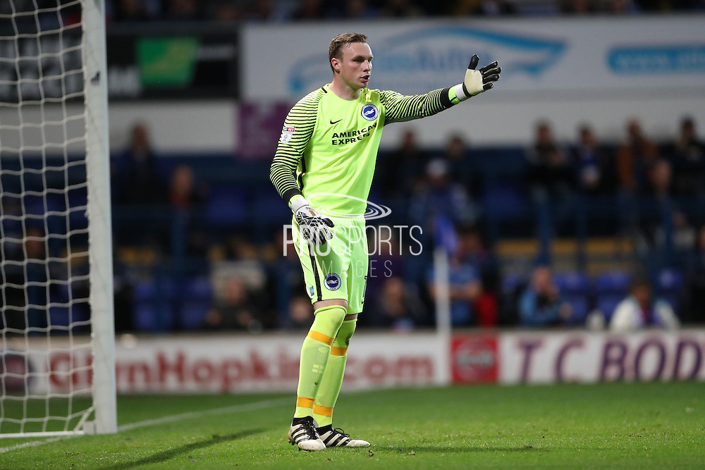 Brighton & Hove Albion goalkeeper David Stockdale (13) during the EFL Sky Bet Championship match between Ipswich Town and Brighton and Hove Albion at Portman Road, Ipswich, England on 27 September 2016.