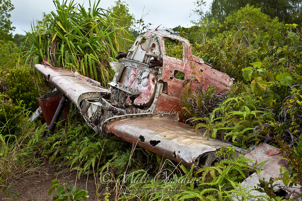 Japanese Zero Wreck, Yap Micronesia (Photo by Matt Considine - Images of Asia Collection)