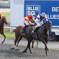 Duke Of Destiny and Jimmy Fortune winning the 4.20 race