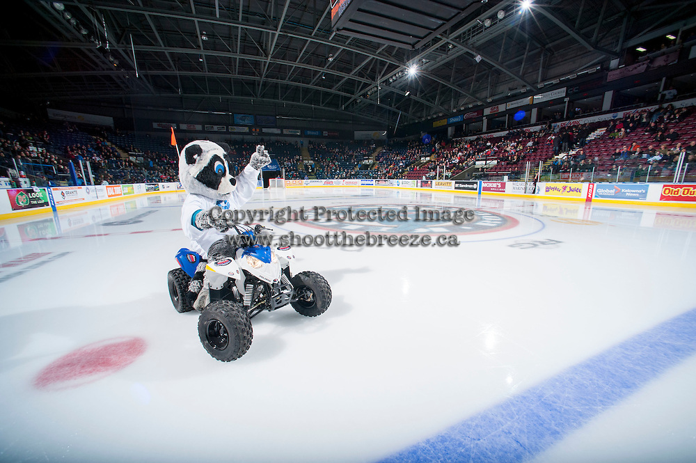 KELOWNA, CANADA - DECEMBER 6: Rocky Racoon, the mascot of the Kelowna Rockets enters the ice as the Kelowna Rockets host the Prince Albert Raiders on December 6, 2014 at Prospera Place in Kelowna, British Columbia, Canada.  (Photo by Marissa Baecker/Shoot the Breeze)  *** Local Caption *** Rocky;