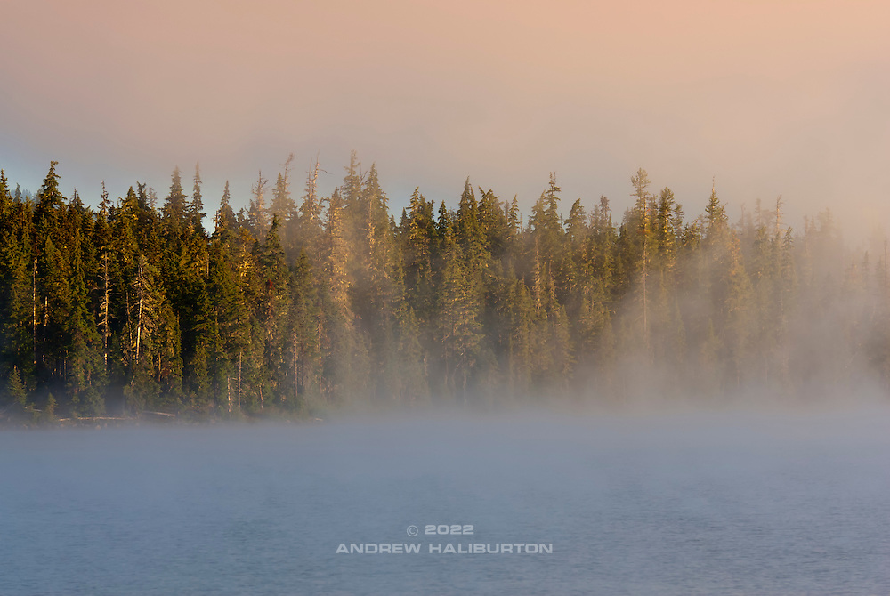 A late-summer sunrise burns off fog at Waldo Lake 1650m, one of the purest water bodies in the Oregon Cascades.