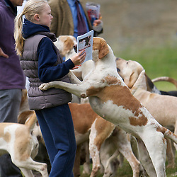 Badsworth & Bramham Moor Hounds