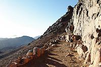 Kameltaxi på Mosesfjellet