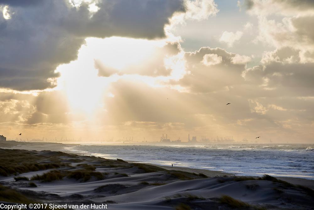 Uitzicht op duinen, zee en maasvlakte bij Rotterdam vanuit de duinen in Den Haag - View of the dunes, sea and the industrial area Maasvlakte near Rotterdam from the dunes in The Hague, Netherlands