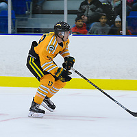 1st year forward Tristan Frei (13) of the Regina Cougars during the Shine On game on October 28 at The Co-Operators Arena. Credit: /Arthur Images