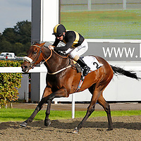 Intransigent and Jimmy Fortune winning the 4.20 race